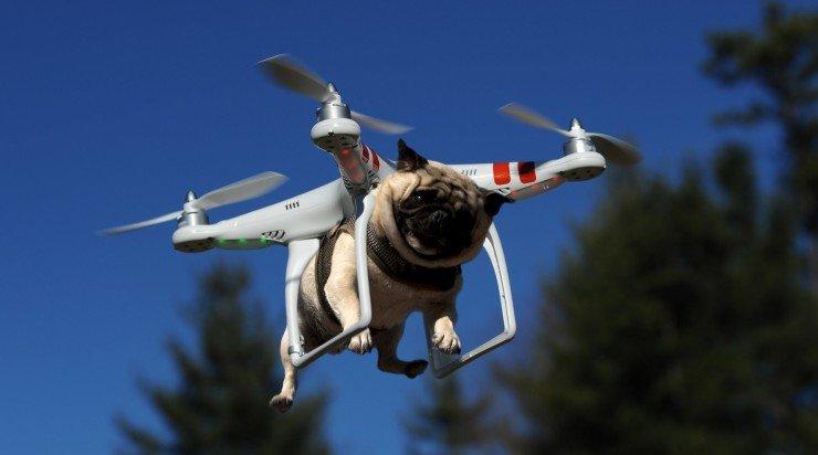 Drones: verschillende soorten en maten!